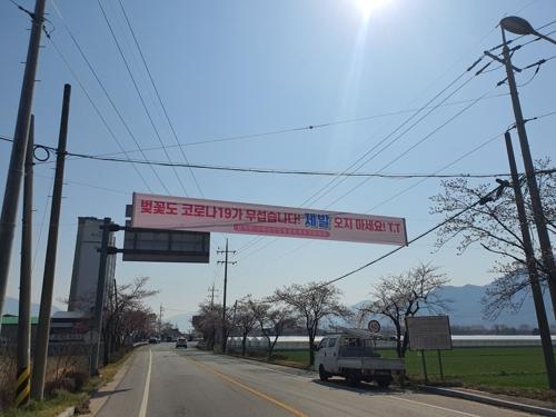 섬진강 벚꽃 구경 내년에 오세요 사회적 거리두기 호소