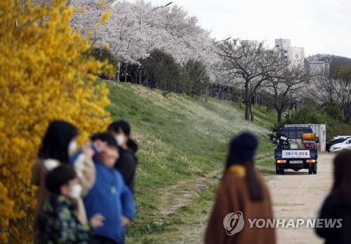 꽃은 만발했는데…3월 마지막 휴일 전국 유명 관광지 한산