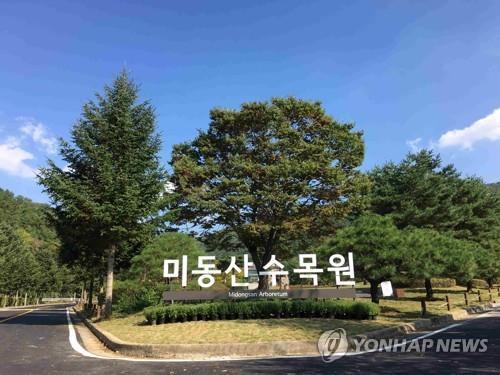 [여행소식] 미보건당국, 사이판 여행경보 레벨2로 완화