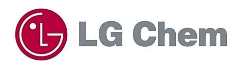 LG Chem raises US$1.56 bln via global debt sale to fund its EV battery biz