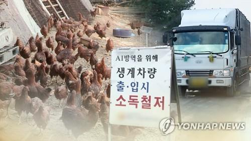 S. Korea confirms another highly pathogenic bird flu case at poultry farm