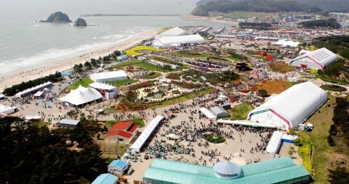 2009년 안면도 꽃지 해안공원에서 열린 꽃박람회