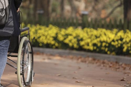 용인테마파크에서 빌려주는 휠체어.(성연재)
