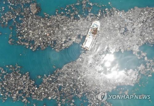 2019년 충남 태안군 소원면 앞바다에 떠오른 해양쓰레기