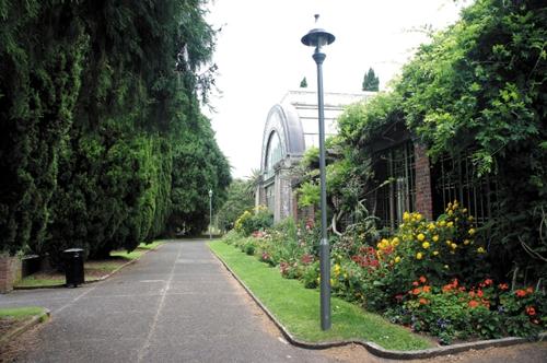 뉴질랜드 도메인 공원