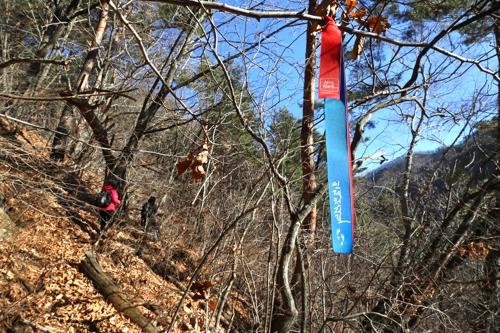 낙엽에 덮인 산기슭 소로 [사진/전수영 기자]