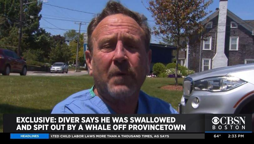 혹등고래 입에 삼켜졌다가 살아서 나온 미 매사추세츠주 주민 마이클 패커드