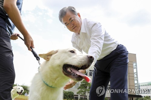 Moon distributes puppies of Pungsan dogs gifted by N.K. leader