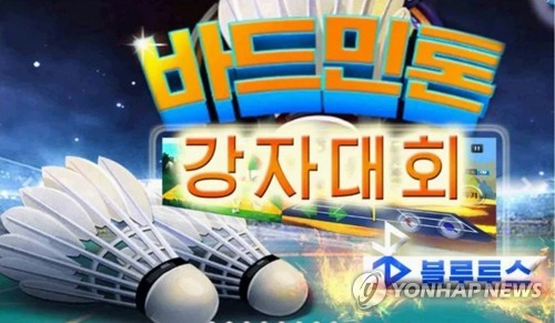 N. Korean online game