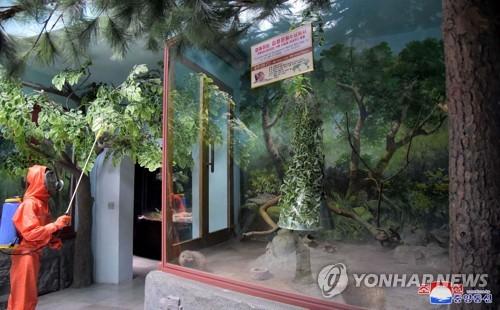 북한, 코로나19 예방 위해 강도 높은 방역 실시