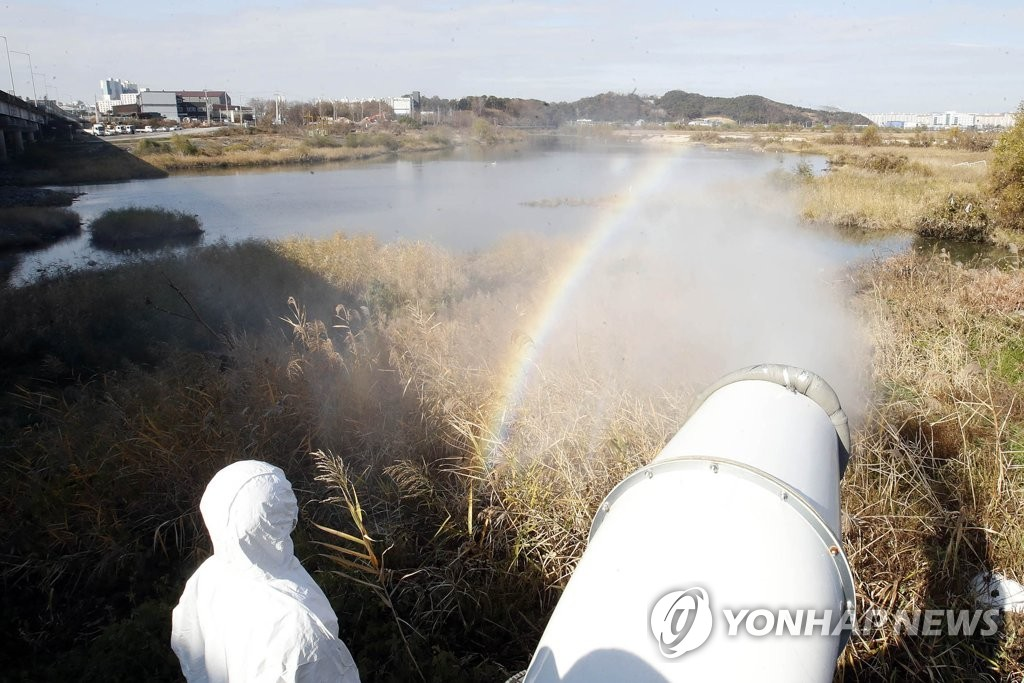 An official sprays disinfectant at a seasonal home for migratory birds in Gwangju, 330 kilometers south of Seoul, on Nov. 30, 2020, in this photo provided by Buk Ward of Gawangju. (PHOTO NOT FOR SALE) (Yonhap)
