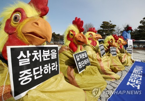 Against poultry culling